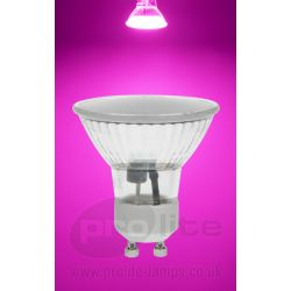 Prolite 1.8W 240V GU10 120° 50mm Magenta Pink Coloured Spot Lamp