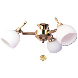 Fantasia 220282 Ceiling Fan Light - Florence 3 Light Cluster Polished Brass